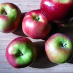 Macoun-Apple