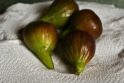 Made in Nature Organic Smyrna Figs 40 Ounce Bag – CostcoChaser