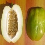 Gaint passion fruit