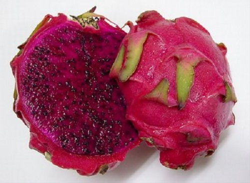 winter fruits red dragon fruit