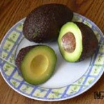 Mexicola Avocado